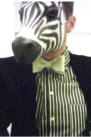 Fancy Zebra