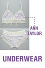 purple ann taylor bra