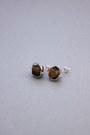 Brown-stud-earrings-crosswoodstore-earrings
