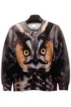 Angry Owl Graphic Sweatshirt